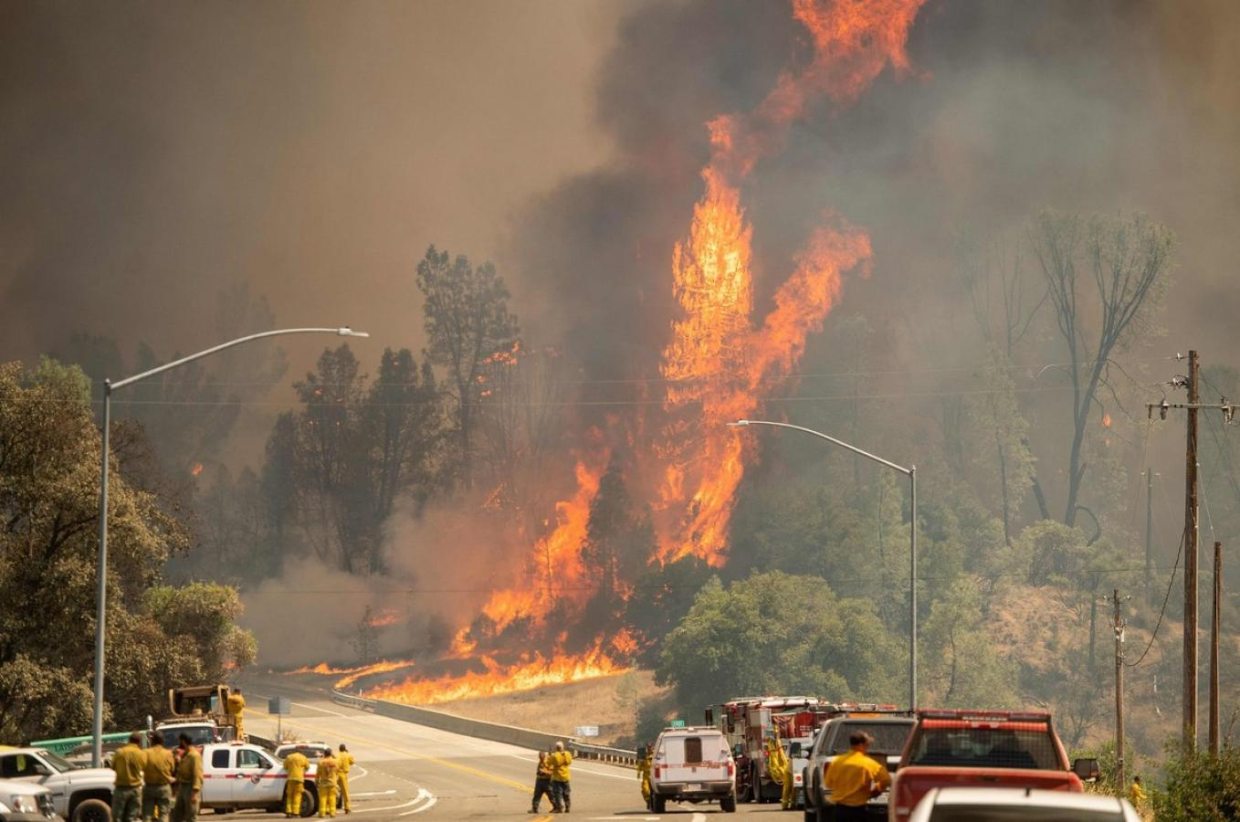 California on Fire – Commentary by Alexander Potemkin